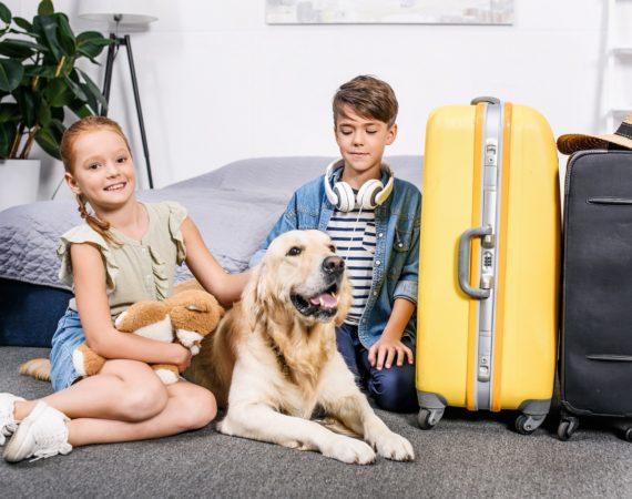 Wohin mit dem Heimtier im Urlaub?